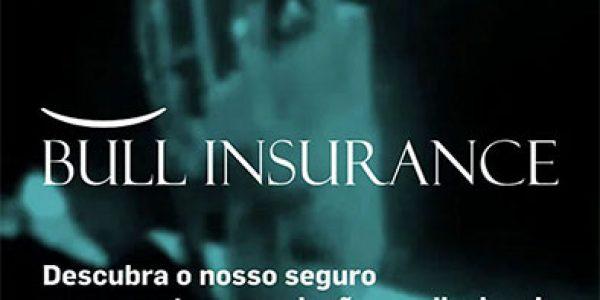 Bull Insurance Web Campaign